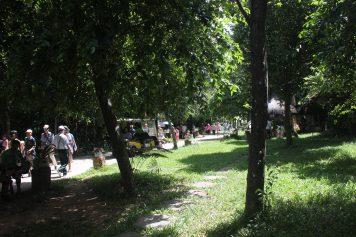 Botanical Gardens, Phong Nha