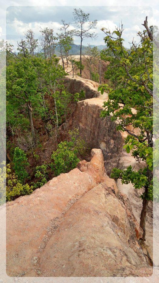 The canyon, Pai