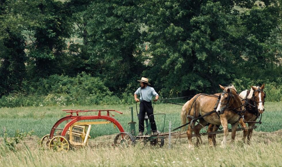 Amish man in Ohio, United States