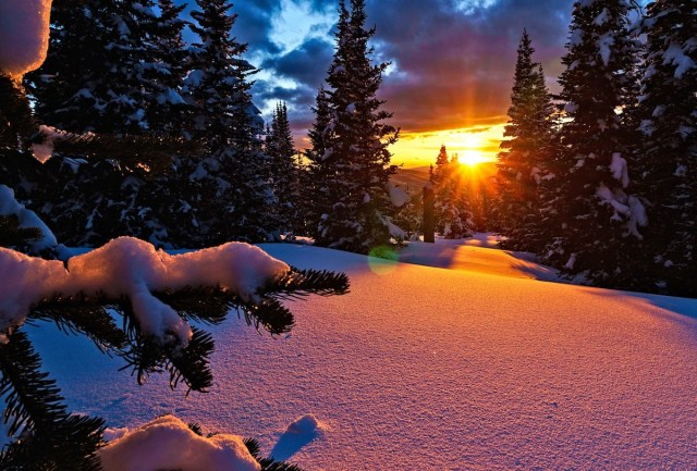 Fresh snow in Colorado, USA.