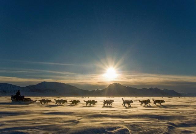 Dog sledding in Ittoqqortoormiit, Greenland.