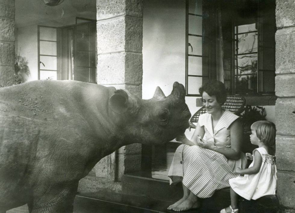 Dr. Dame Daphne Sheldrick, a rhino and a girl.
