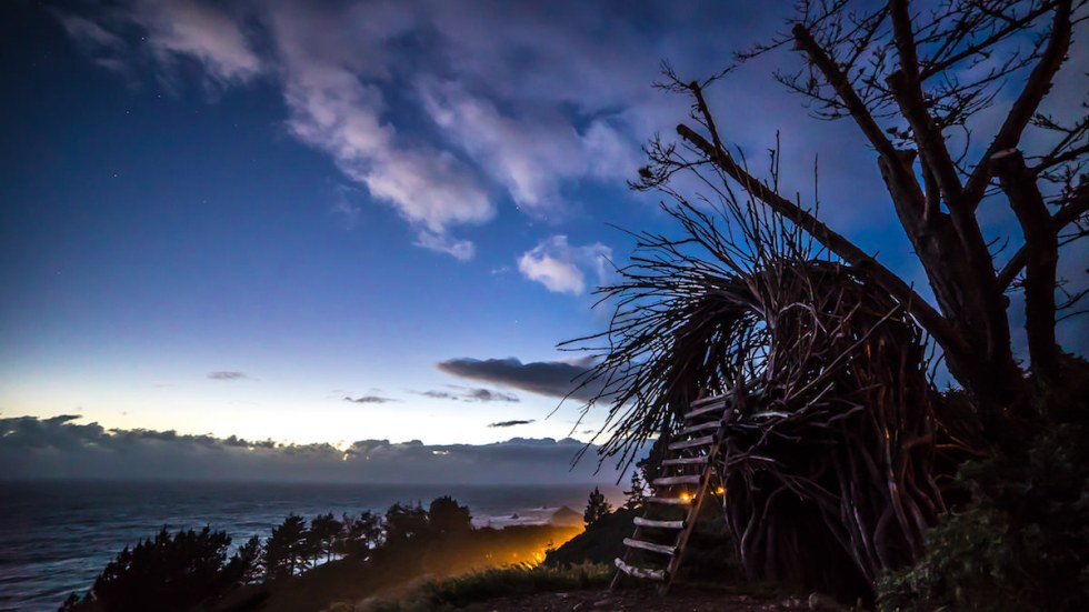 Human-sized nest perched high above the Pacific Ocean