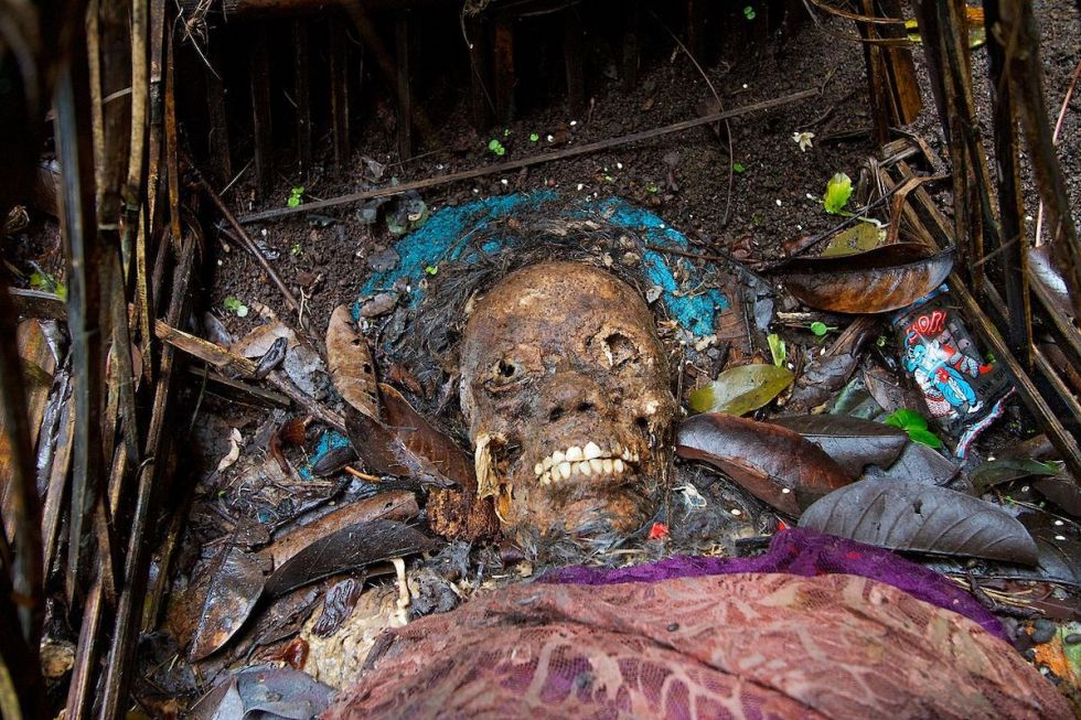 Dead Person decomposing above the ground under a sacred tree in the village of Trunyan on the island of Bali