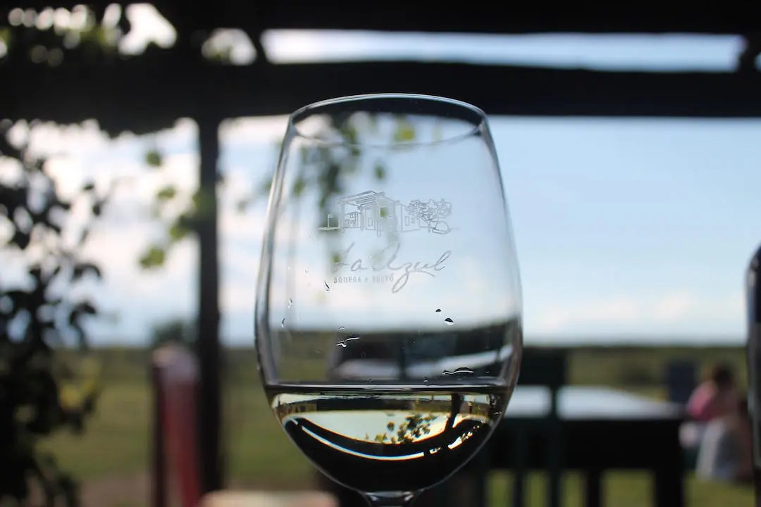 A cup of wine from Bodega Azul