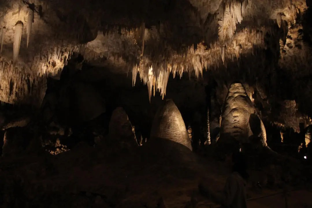 Stalagmites and stalactites of the Big Room within Carlsbad Caverns