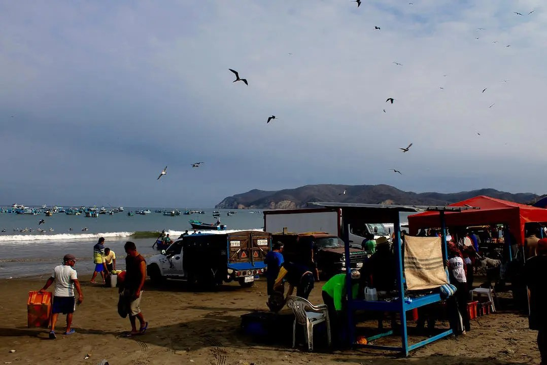 Fresh seafood market on the beaches of Puerto Lopez where the local fishermen bring in the daily catch.