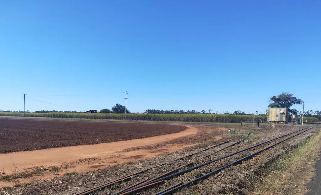 Bundaberg's Sugar Cane Fields