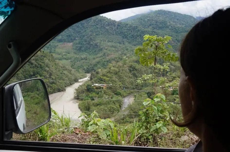 The wild jungle of Peru on Ruta 28b