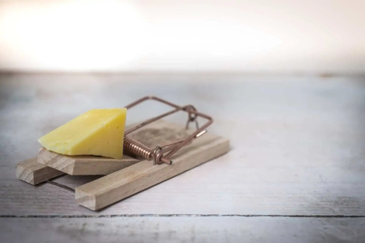 brown wooden mouse trap with cheese bait on top