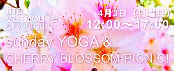 Cherry blossom picnic header 2 copy