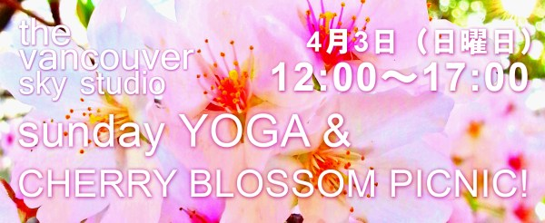 Cherry blossom picnic header 2 copy