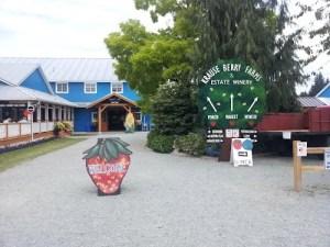 Krause berry farm 2