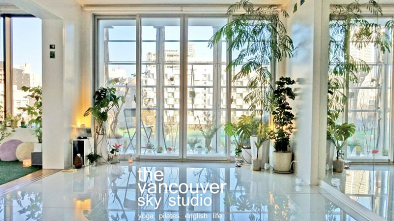 Our beautiful studio with the morning sun!