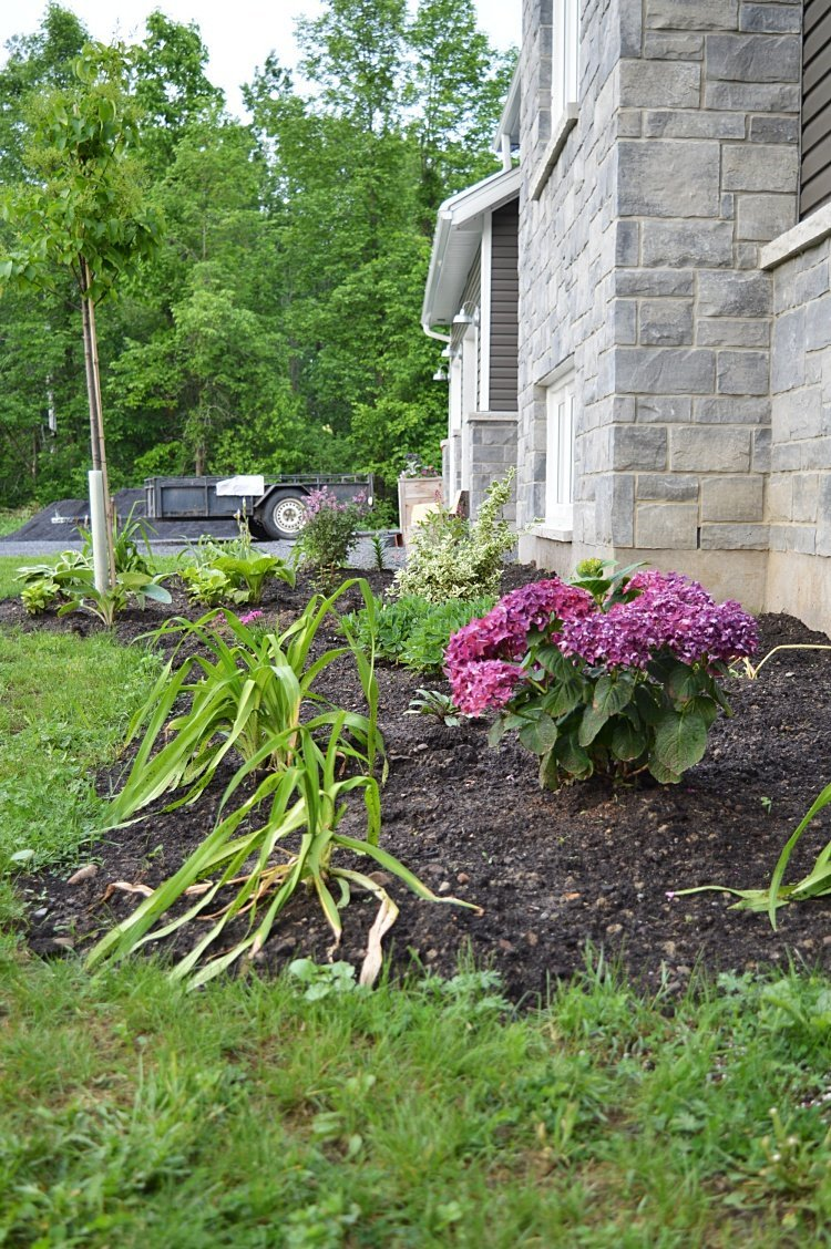 My Tips For Designing And Planting A Low Maintenance Flower Bed
