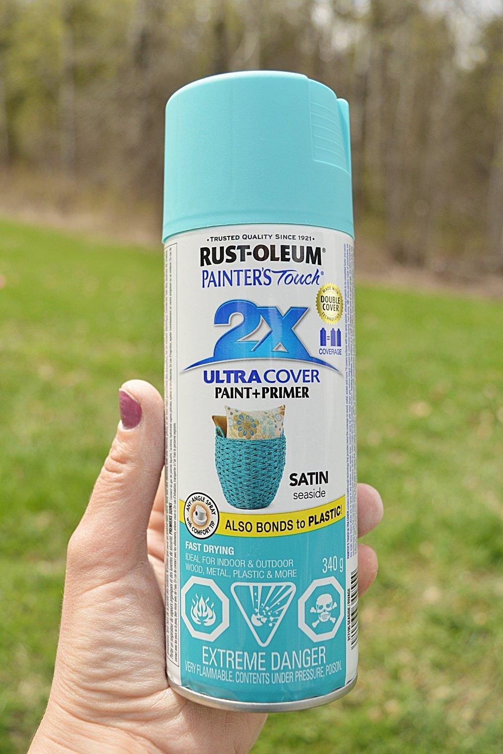 rust-oleum painters touch seaside satin