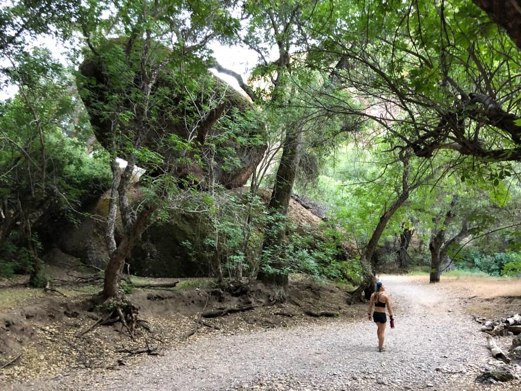Emily walking among big rocks on Balconies Cave trail