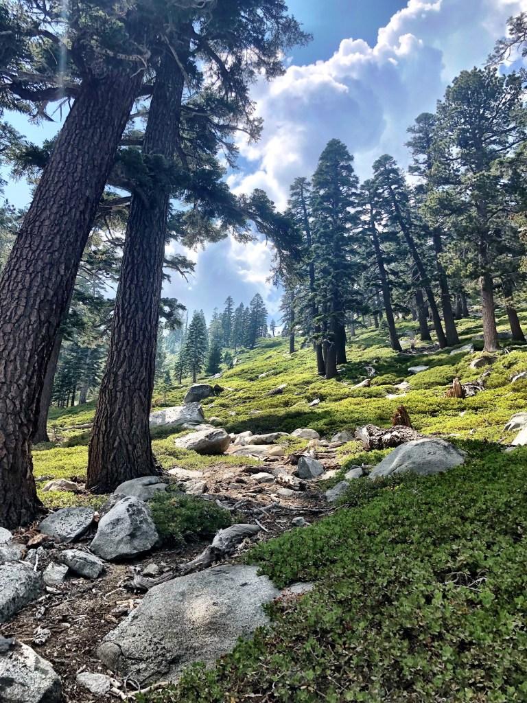 Desolation Wilderness steep up hill