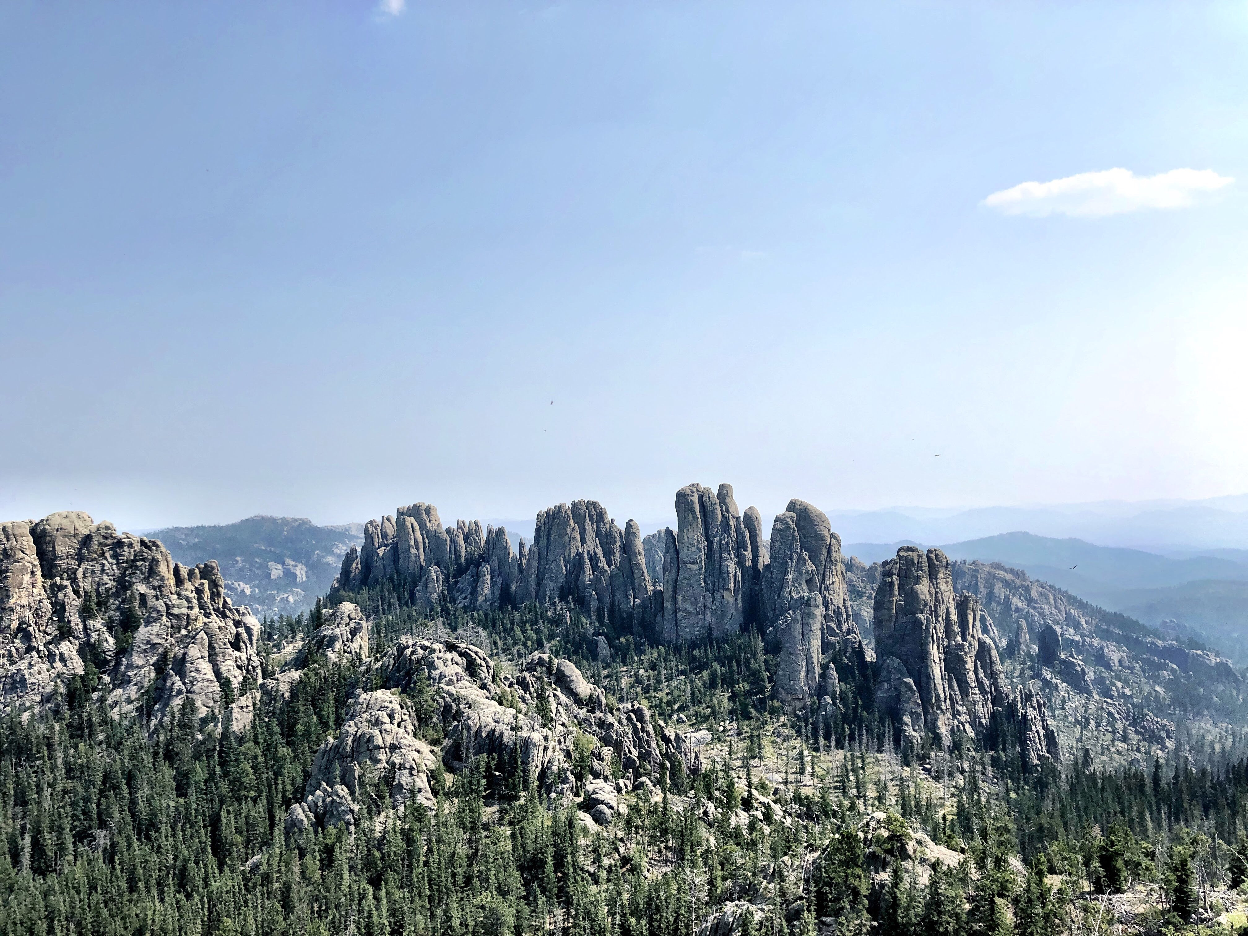 Cathedral Spires in Custer State Park looks like teeth