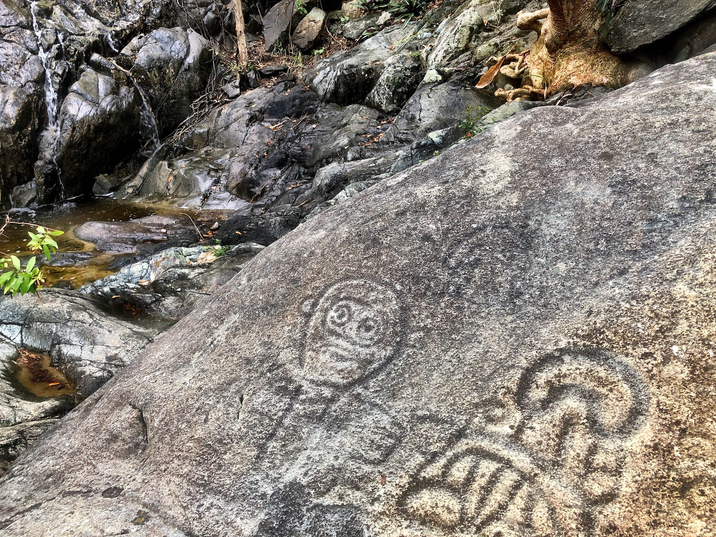 Petroglyphs on US Virgin Islands National Park from BC