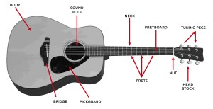 Acoustic Guitar Buyer's Guide