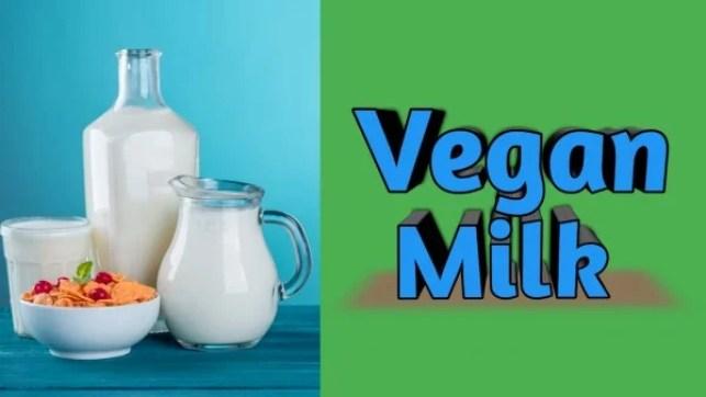 How to make vegan milk in Hindi ? वेगन मिल्क कैसे बनता है?
