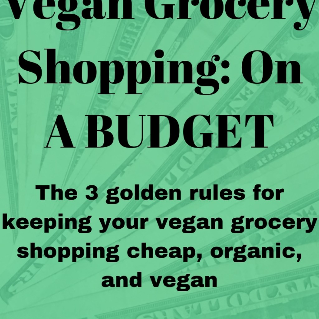 Vegan On A Budget — The Vegan FEMPIRE
