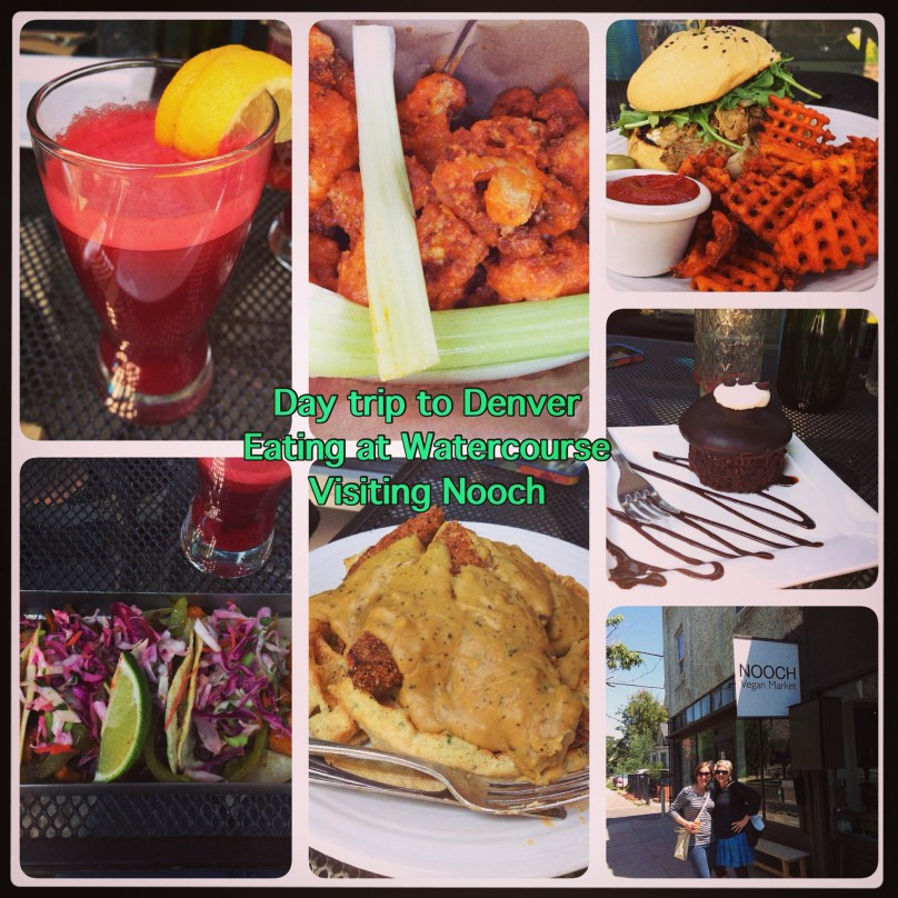 Lunch at WaterCourse in Denver and shopping at Nooch