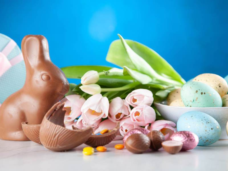 Vegan easter candy, like chocolate bunny and peanut butter eggs on table with blue background.