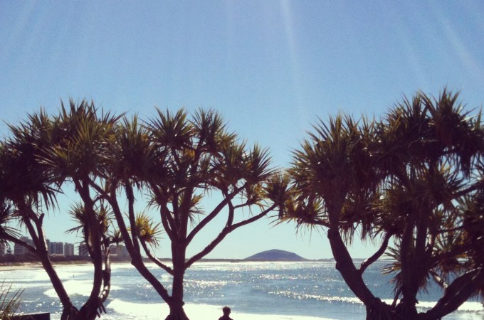 Things to See + Do on the Sunshine Coast
