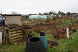 A look at the allotment