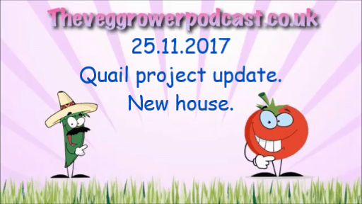 Video update to the quail project.