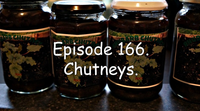 Join me in this week's podcast where I discuss chutneys. I also discuss the latest on the allotment and vegetable patch.