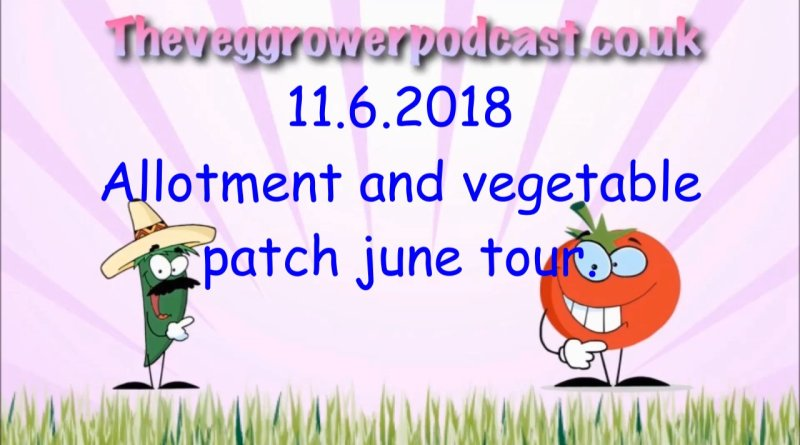 Join me in this week's video from the veg grower podcast where I take my monthly trip around the allotment and vegetable patch.