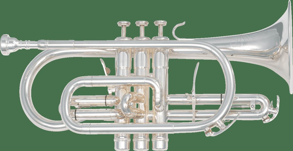 cornet sml