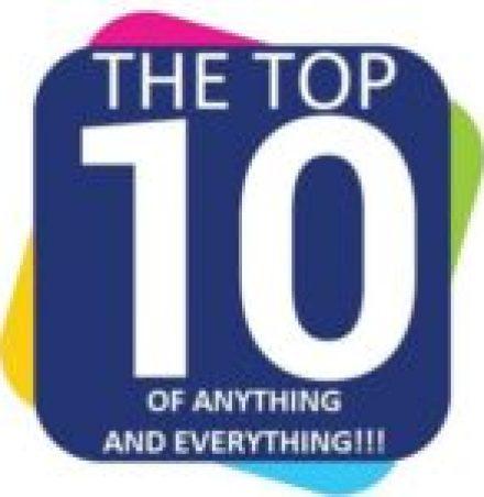 Painted Pebbles made to look like mushrooms