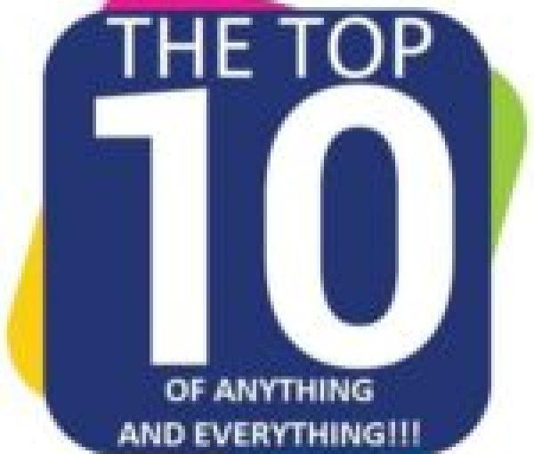 polar bear surfing