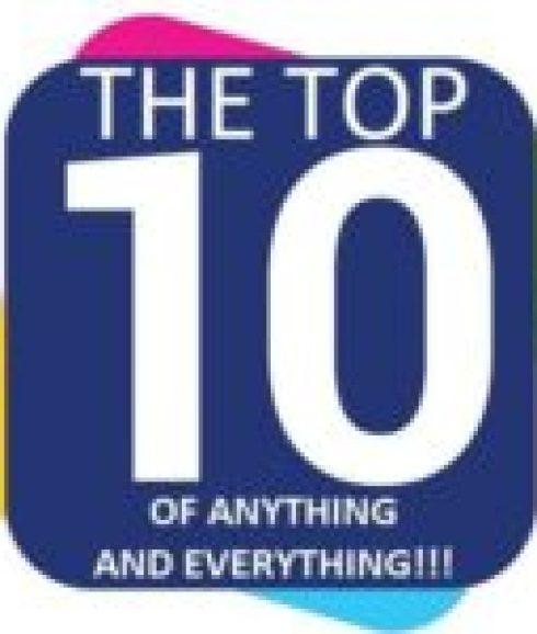 Purple Flip Flop Wall planter