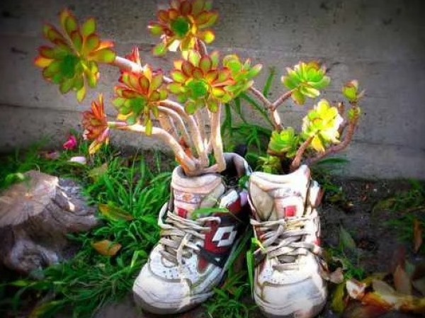 Childs Trainer shoe planter