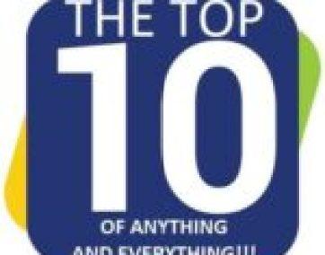 Group of Cats Avoiding The Sunshine