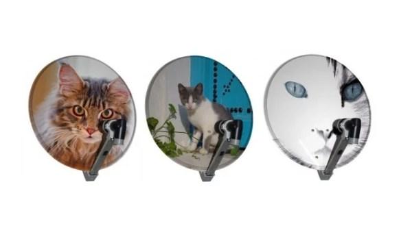 Cat Effect Satellite Dish Art