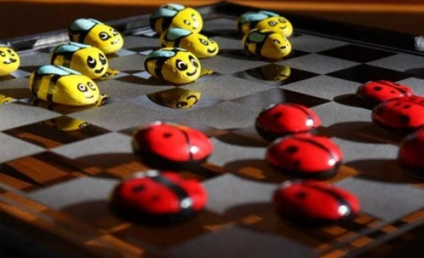 Lady Bugs vs. Bumble Bees Checkers Set