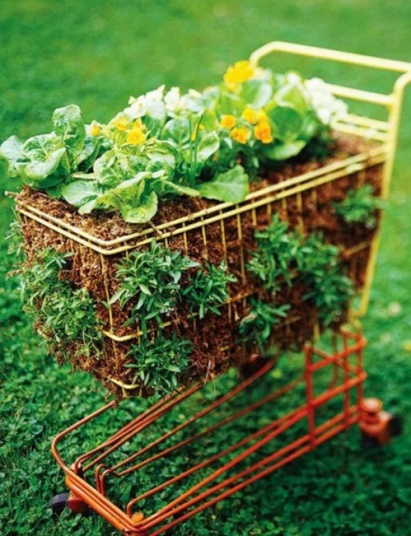 Shopping Trolley garden