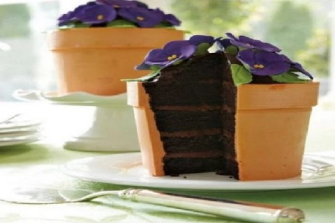 Ten Designs and Recipes for Cakes Make to Look Like Pot Plants
