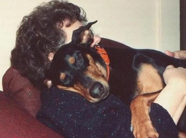 Dog cwtching, cuddling, hugging human