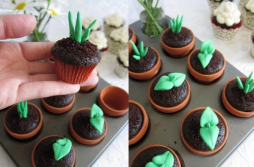 Pot plant shaped cake