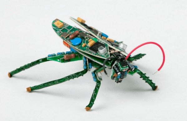 Locust made with Printed circuit boards (PCB)