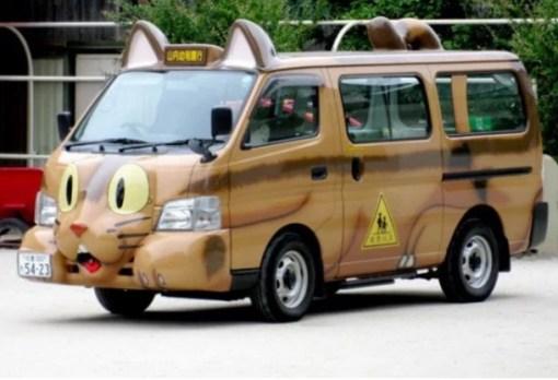 cat taxi bus