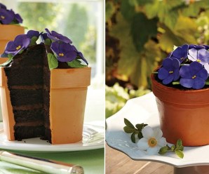 Top 10 Recipes For Pot Plant Cakes