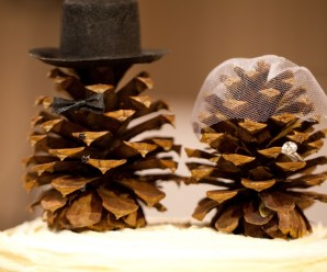 Top 10 Things to do With Pine Cones